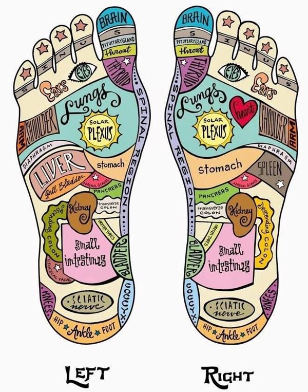image of foot reflexology pressure points
